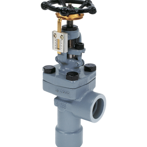 Series 5505 Blowdown Globe Valves